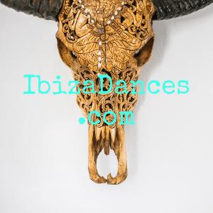 IbizaDances.com - ondernemen - netwerk