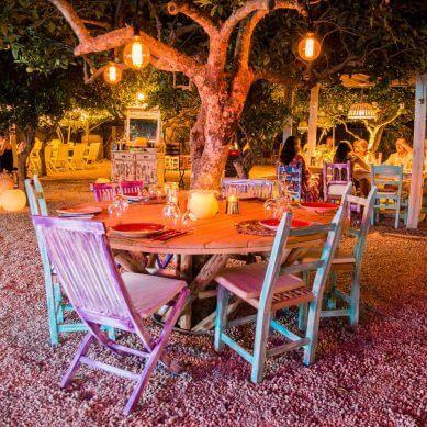 Romantisch eten in een Ibiza boomgaard